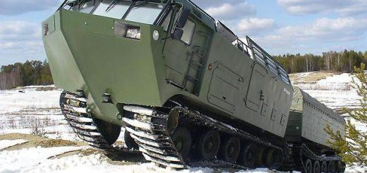 ДТ-10П